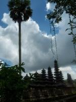 Bali014.jpg