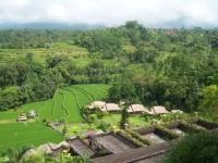 Bali031.jpg