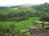 Bali034.jpg