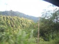 Bali052.jpg