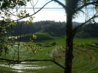 Bali074.jpg
